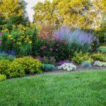 9 основных ошибок при создании цветника