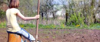 Как правильно подготовить землю к следующему сезону
