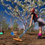почва для садовых участков