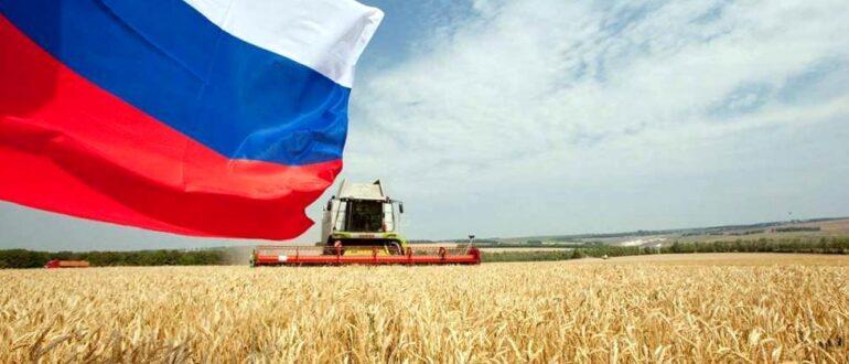 Влияние кризиса на сельское хозяйство
